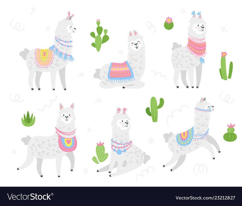 Cute lama alpaca animal