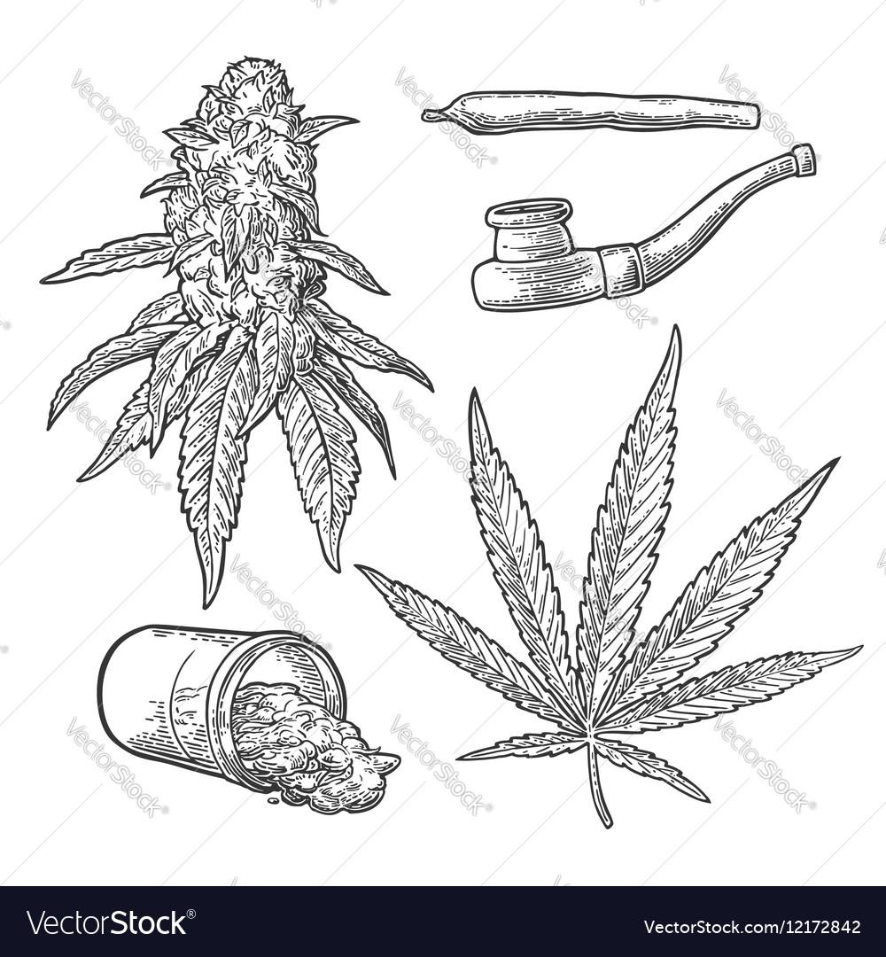 Marijuana buds leaves bottle cigarettes and