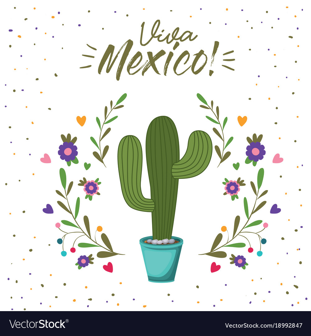 Viva mexico colorful poster with cactus plant