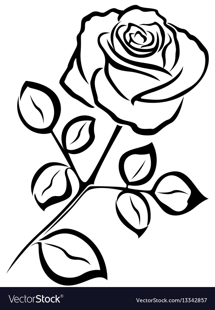 Rose black outline Royalty Free Vector Image - VectorStock