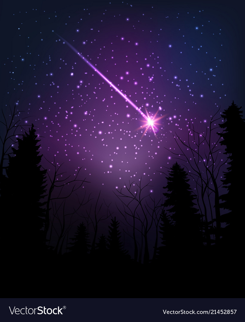 Star falling through dark night starry sky above