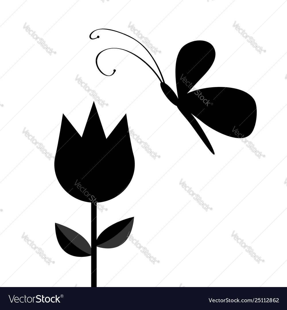 Tulip flower with leaf and flying butterfly