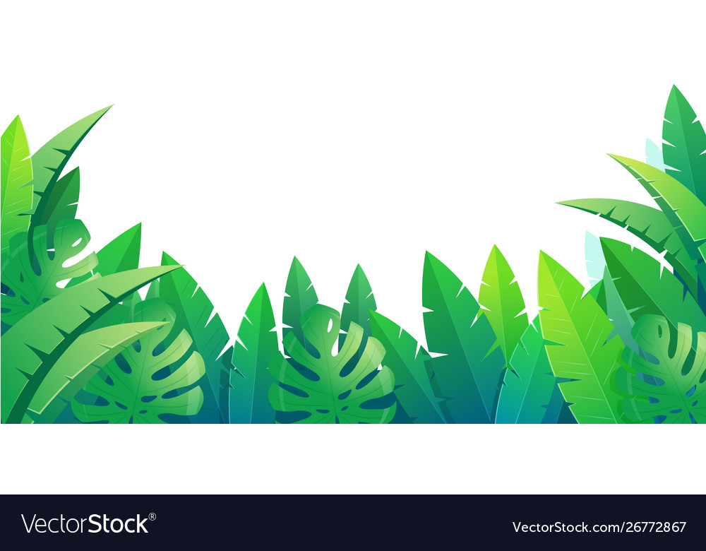 Summer tropical background with palm leaves