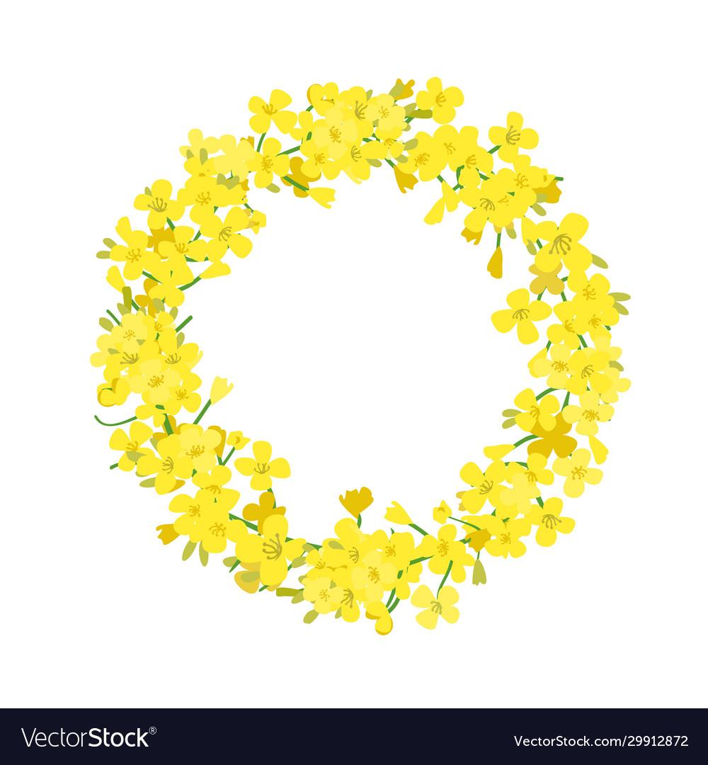 Canola wreath rapeseed garland blossom flowers