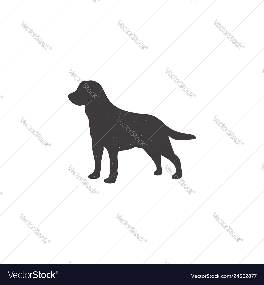 Labrador icon in silhouette style dog stand