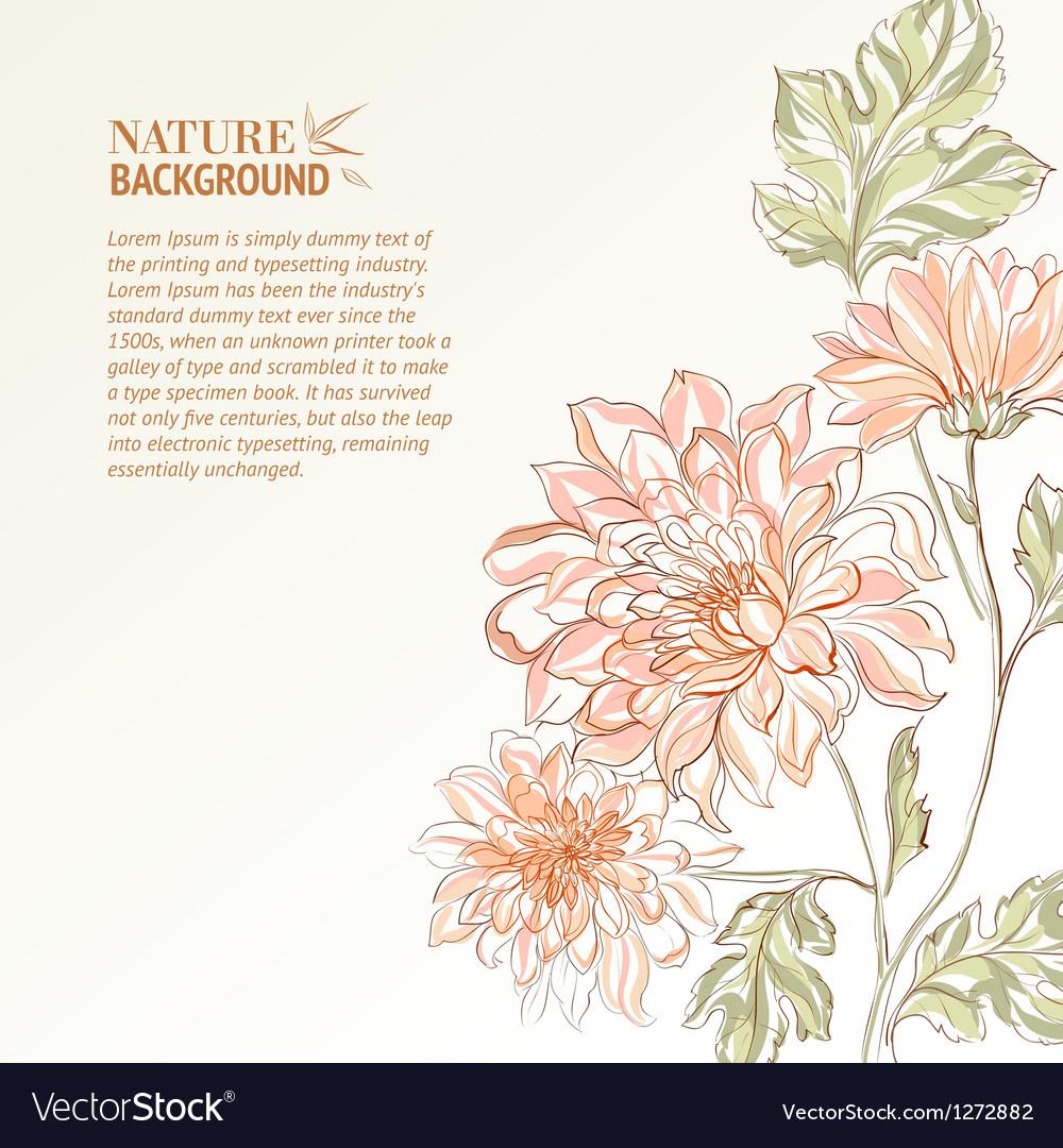 Branch chrysanthemum