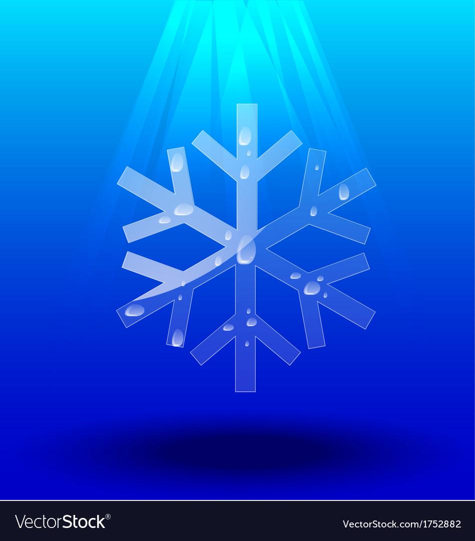 Snowflakes crystal
