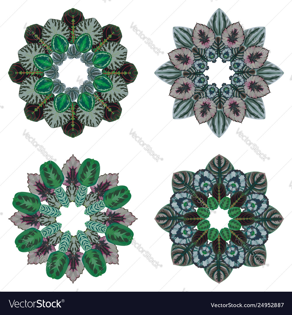 Four ornament round floral pattern