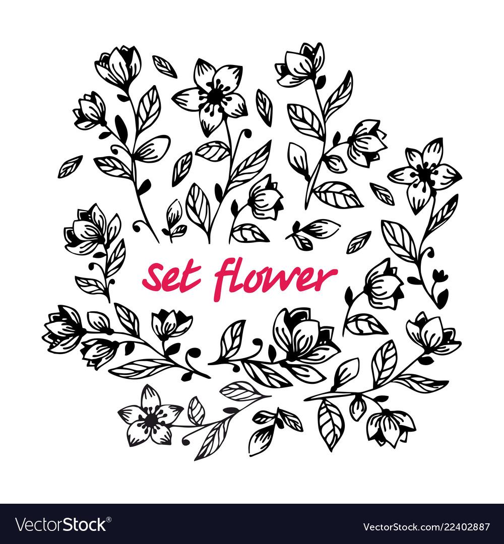 Hand draw black flower set