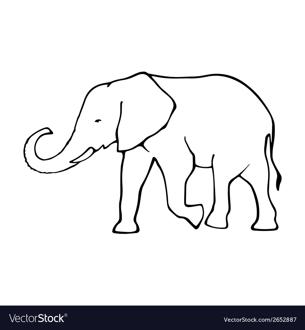 Outline Elephant Template For Design Vector Image