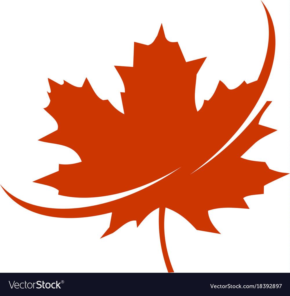 canadian maple leaf images - 1000×1019