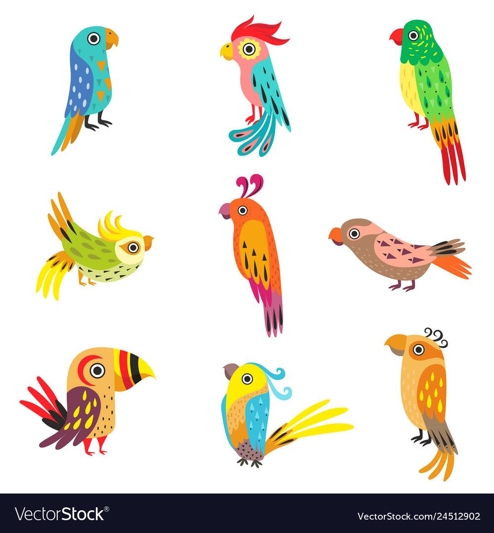 Collection cute colorful tropical parrots