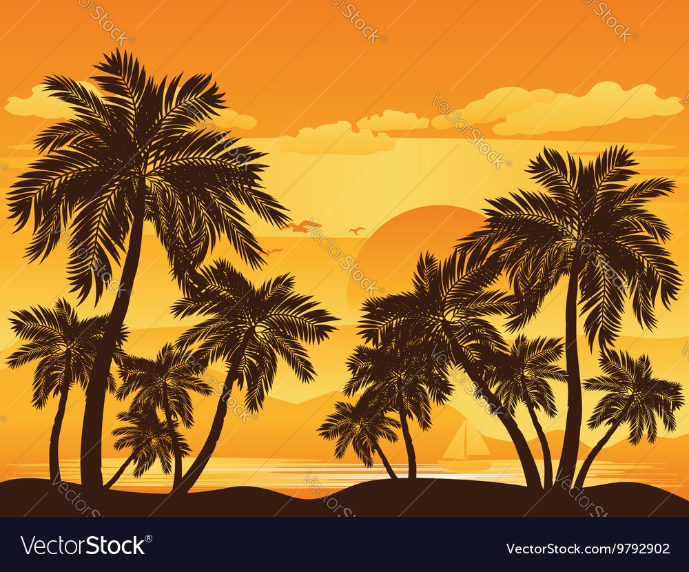 Palm Tree at Sunset4