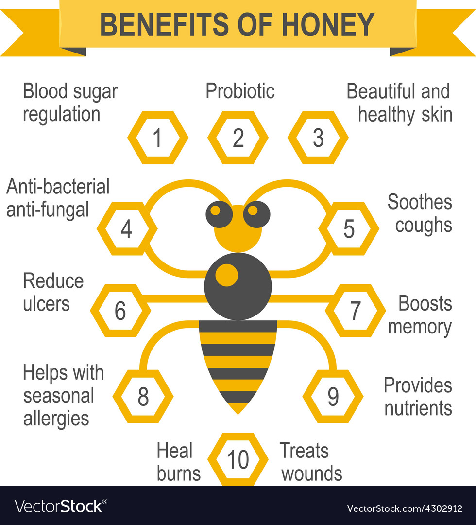 Healthy honey infographic placard