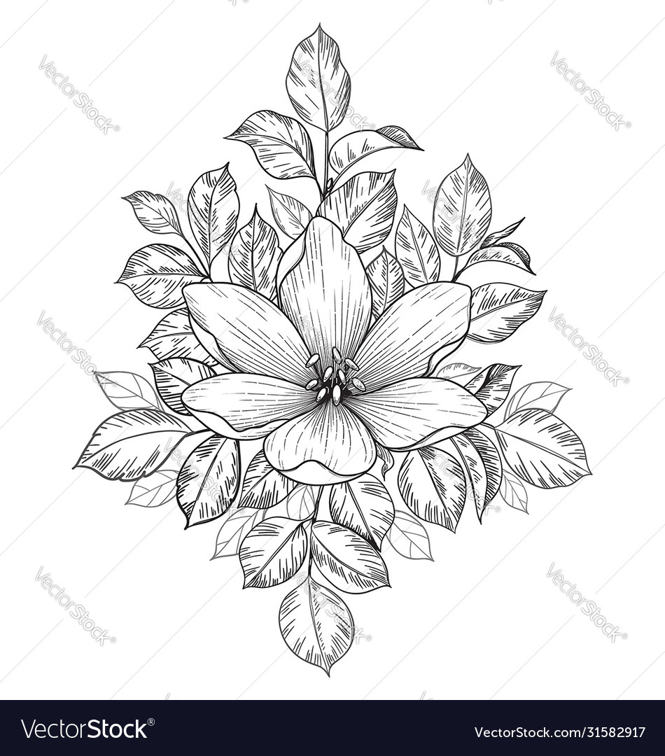 Hand drawn composition with big flower