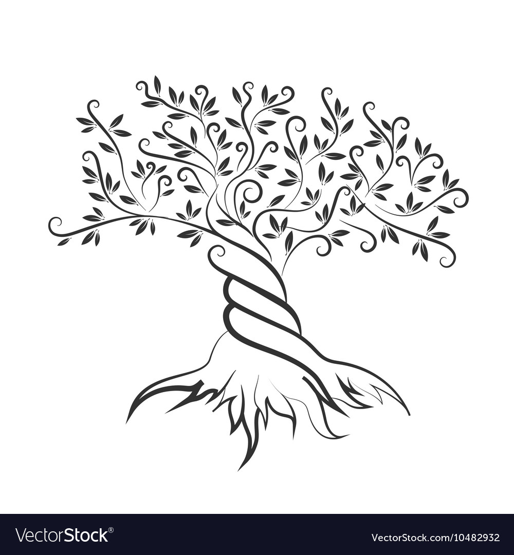 Olive tree outline curl silhouette icon Royalty Free Vector