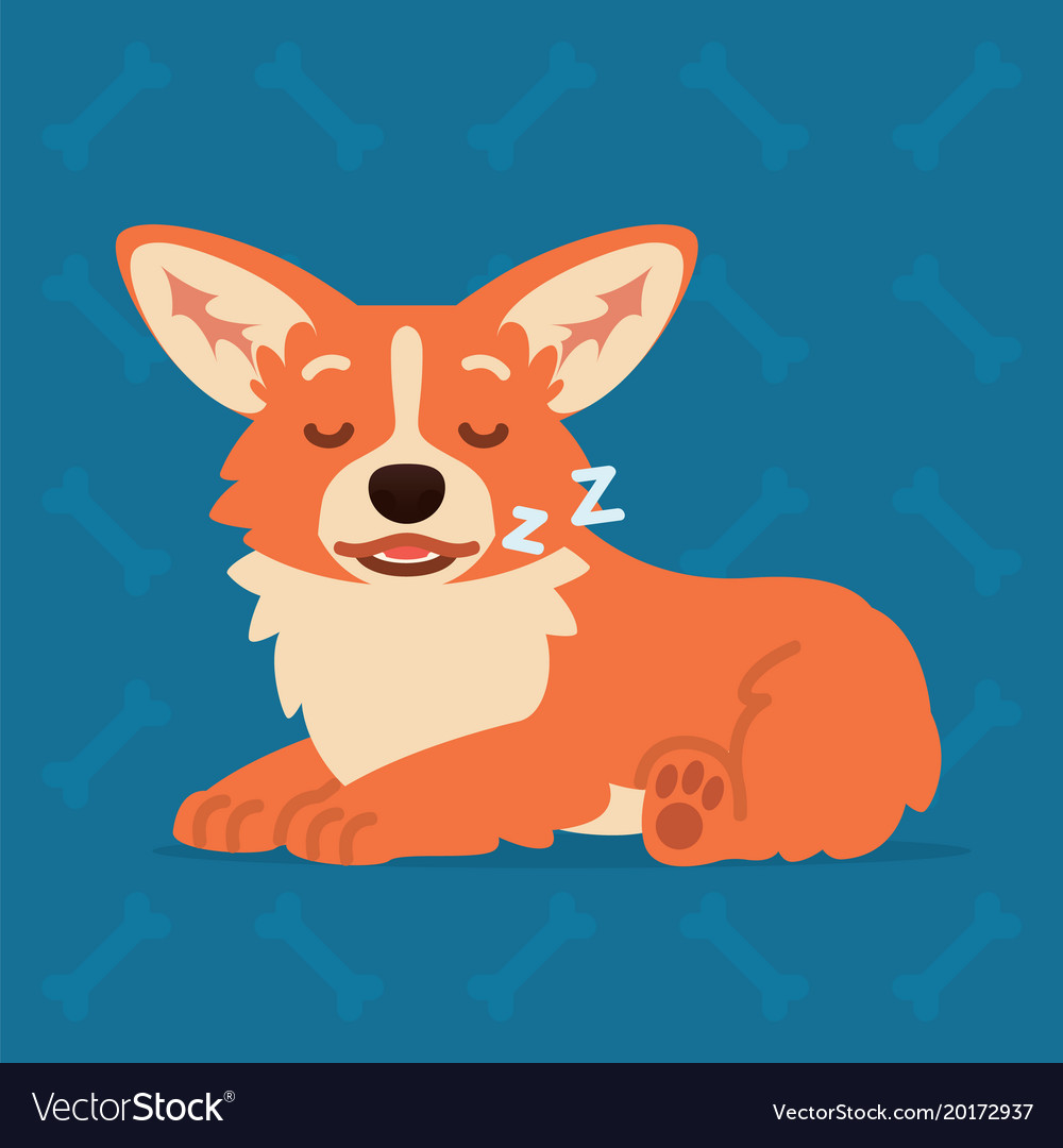 Cute welsh corgi lay and sleep element for your