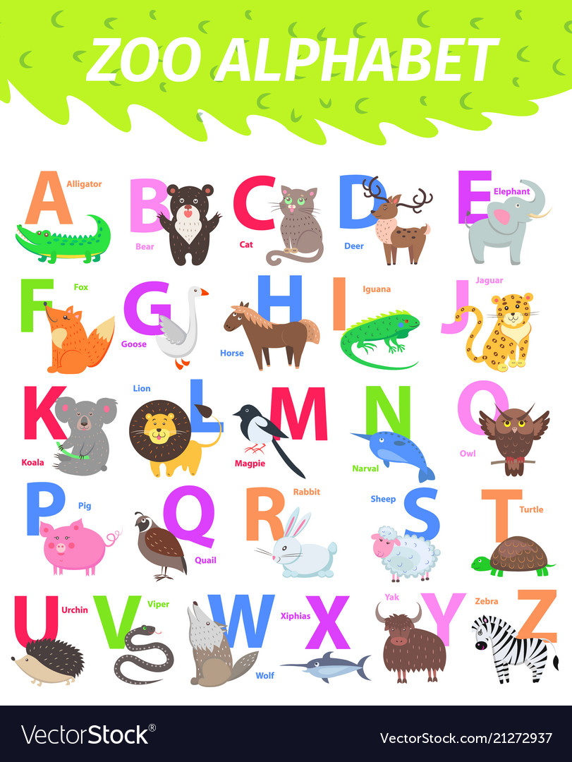 Zoo alphabet with cute animals cartoon flat vector image altavistaventures Image collections