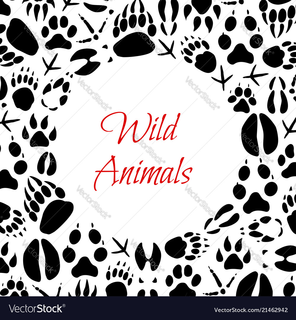 Wild animals footprints poster