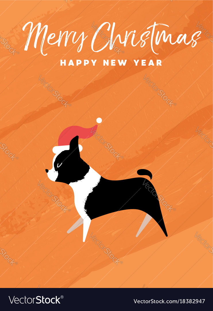 Christmas and new year holiday boston terrier dog
