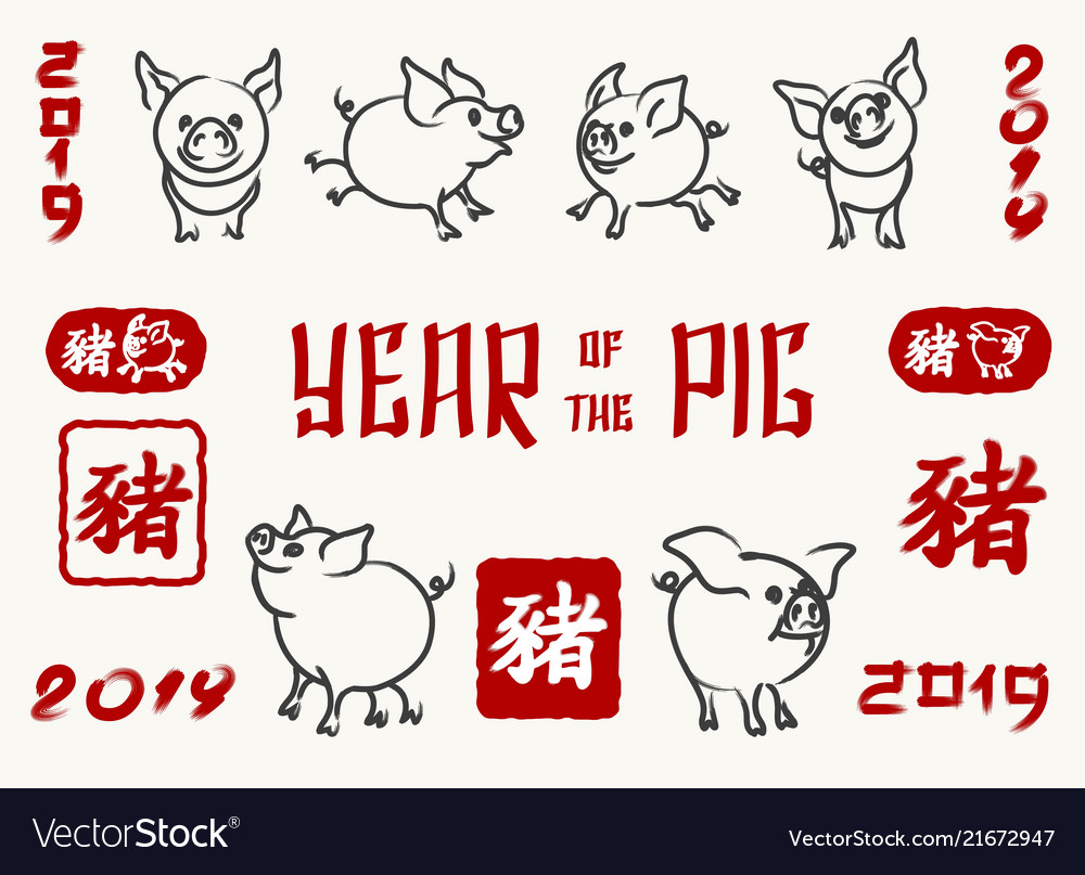 Pig 2019 chinese new year symbol