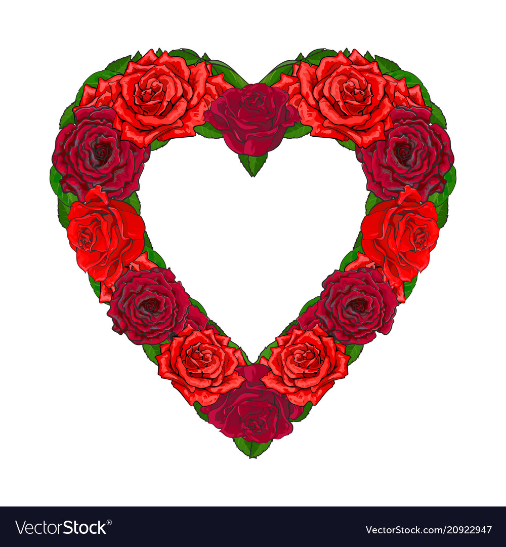 Red roses with leaves in sketch style - romantic