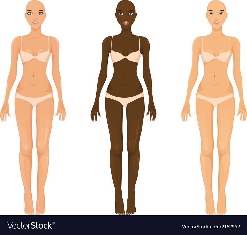 Female models vector image