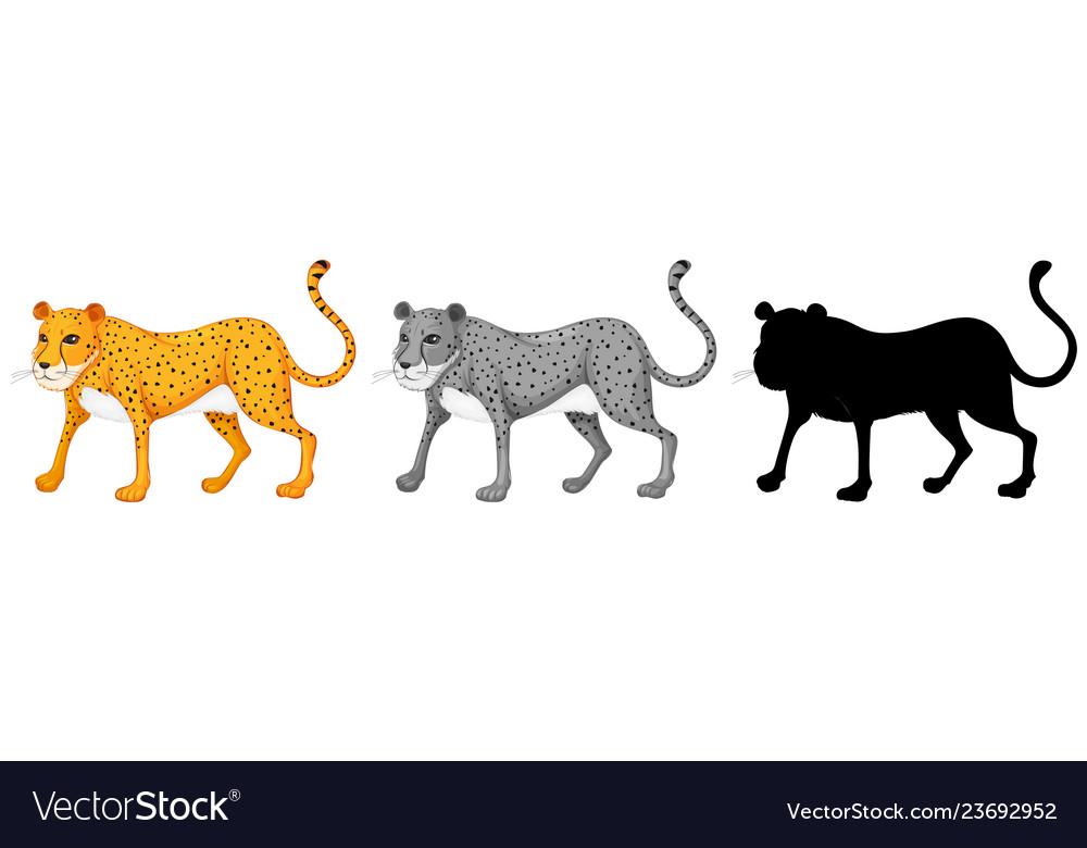 Set of cheetah character