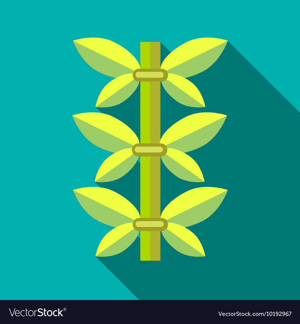 Green bamboo icon flat style vector image