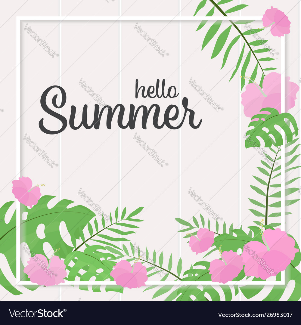 Pink hibiscus flowers summer frame square banner