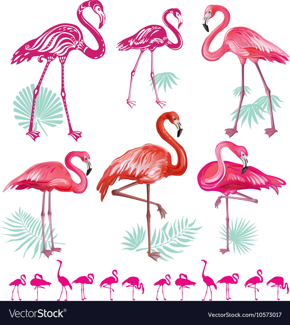 Set of pink flamingoes