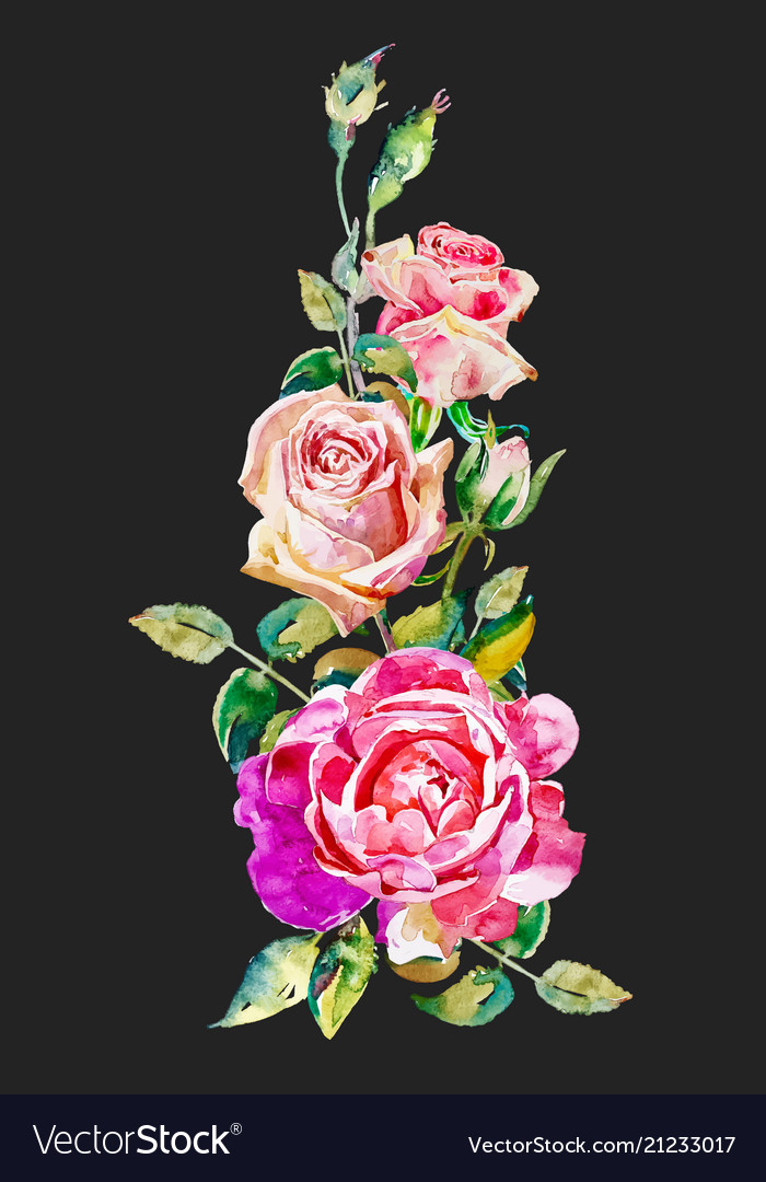 Watercolor vintage pink roses pattern isolated on