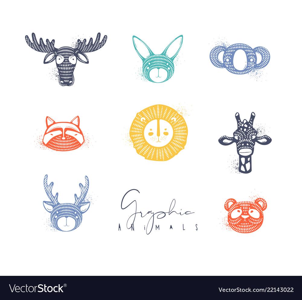 Animals authentic graphic color