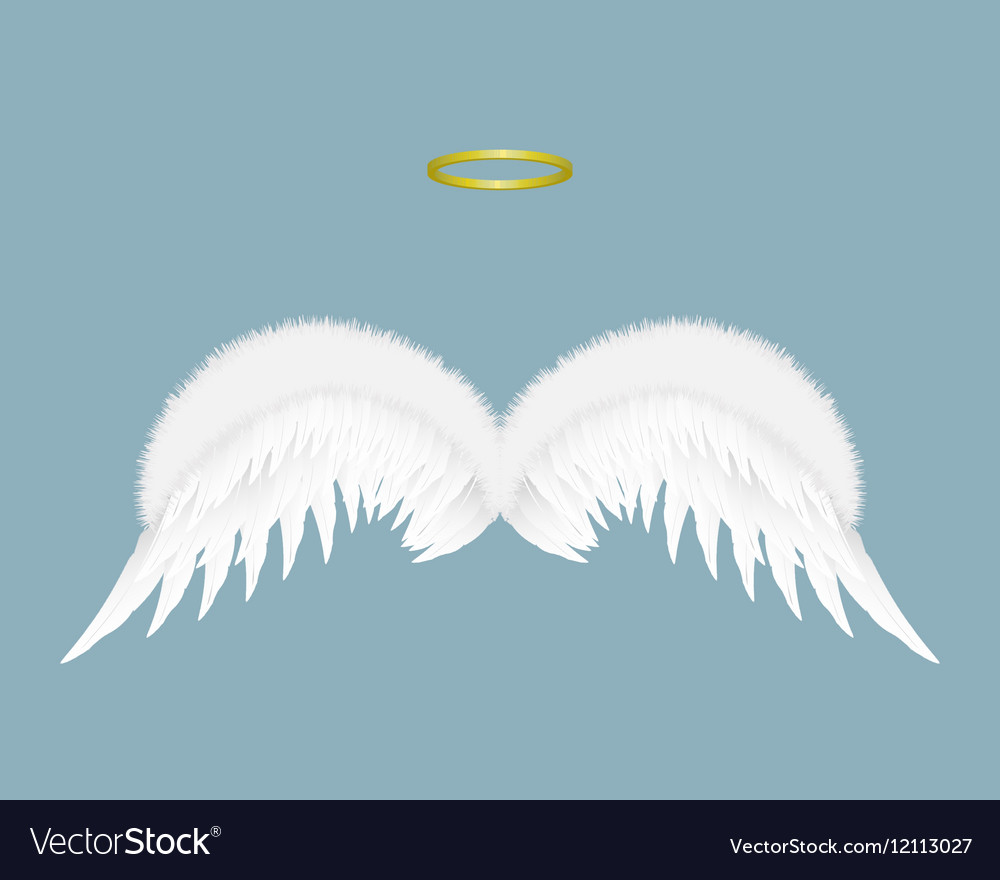Angel wings and halo isolated on background
