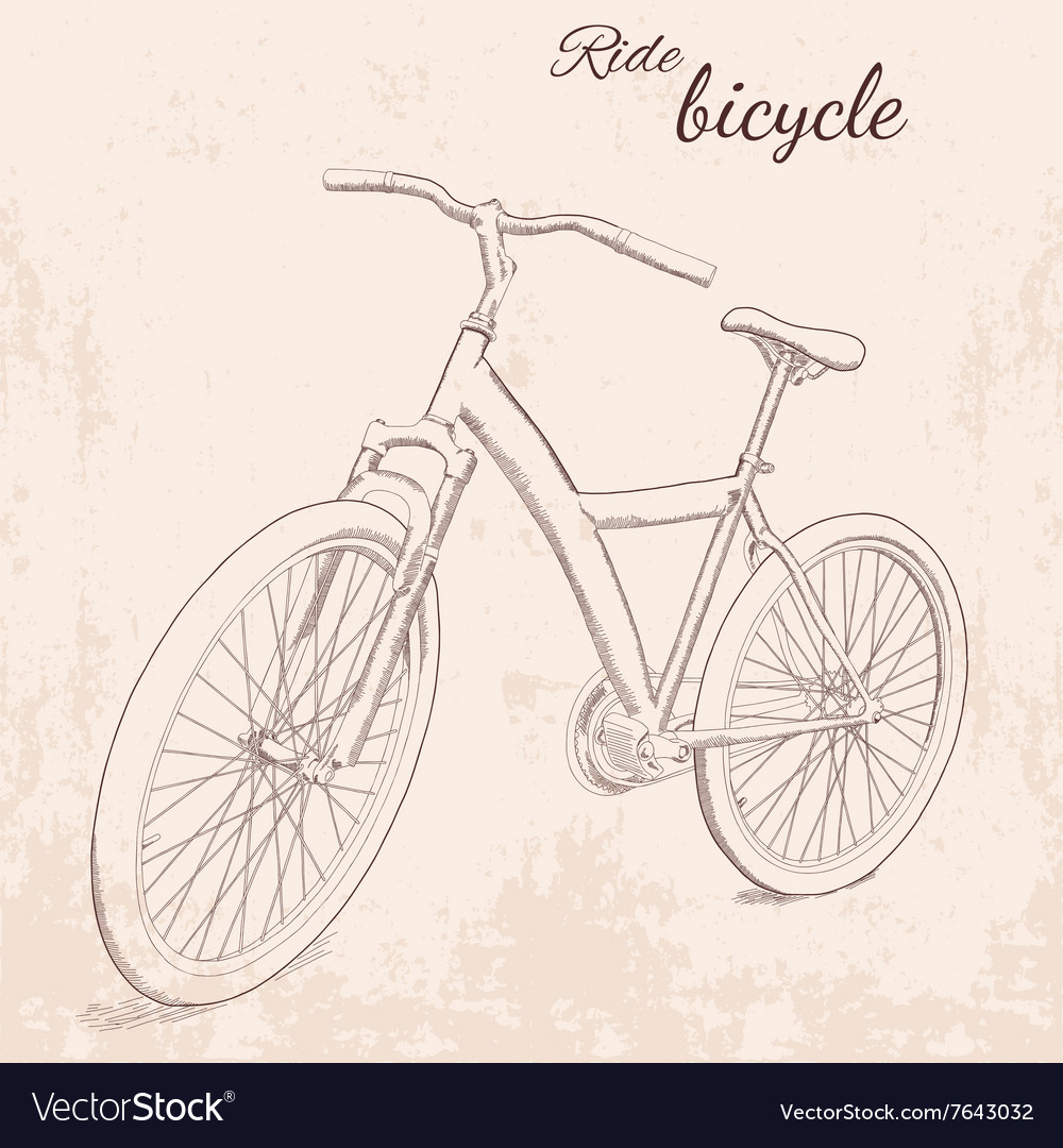Hand drawn vintage of bicycle vector image