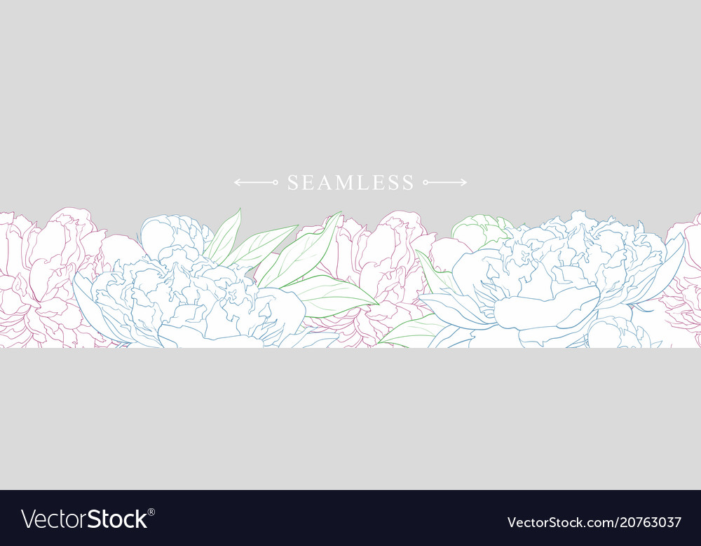 Elegant white peonies with colorful pathes border
