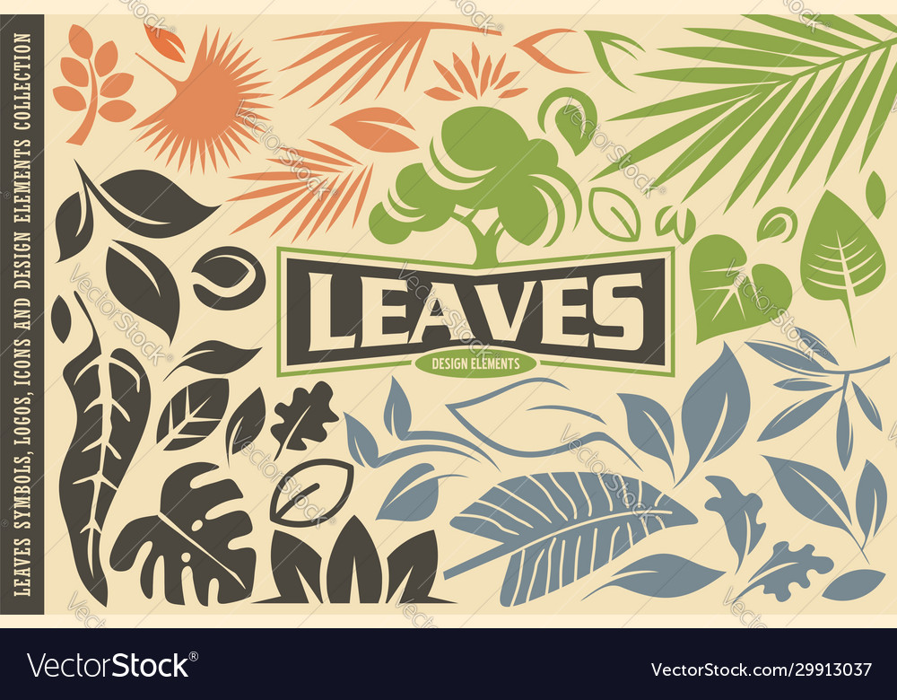 Leaves symbols graphics icons and logos