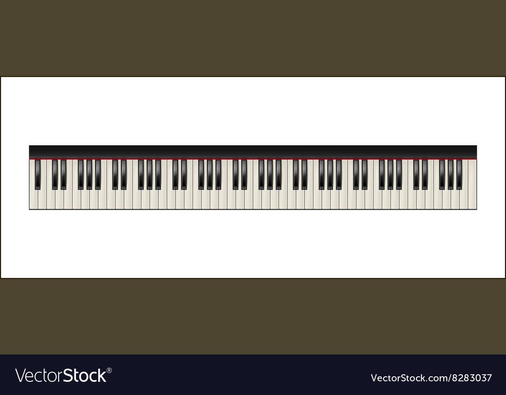 Piano keyboard 88 keys isolated vector image
