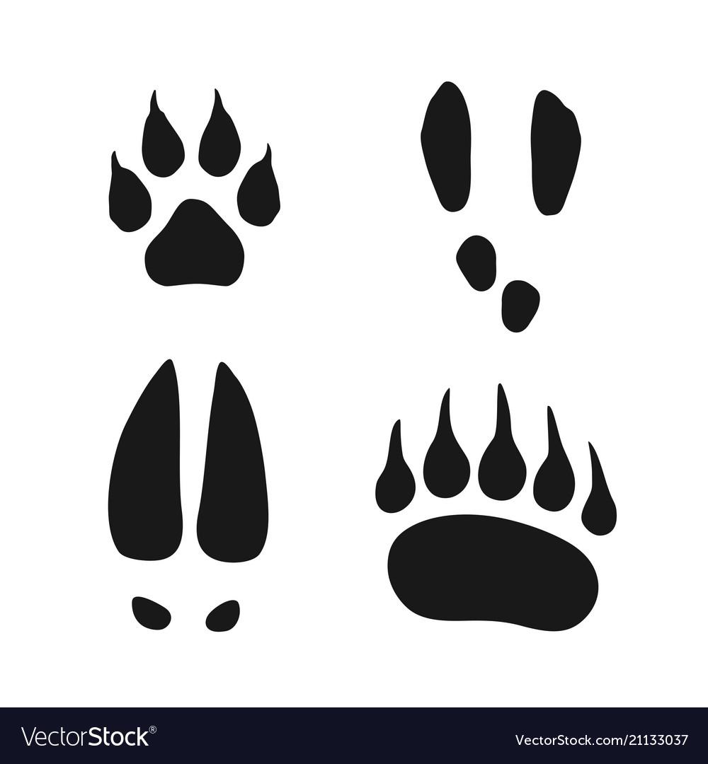 Wild animals footprints set