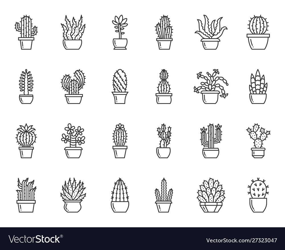 Cactus plant simple black line icons set