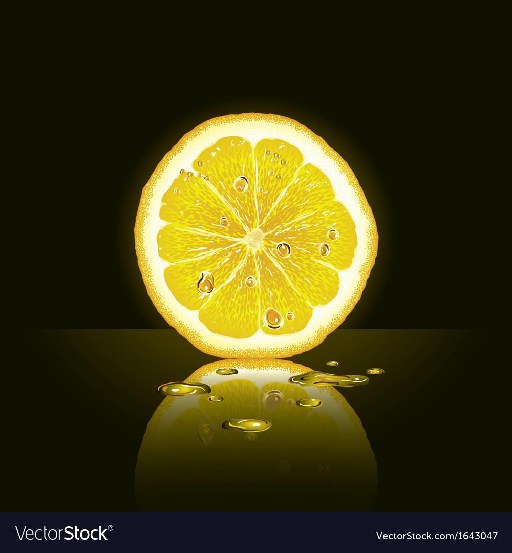 lemon slice on black background vector image on vectorstock
