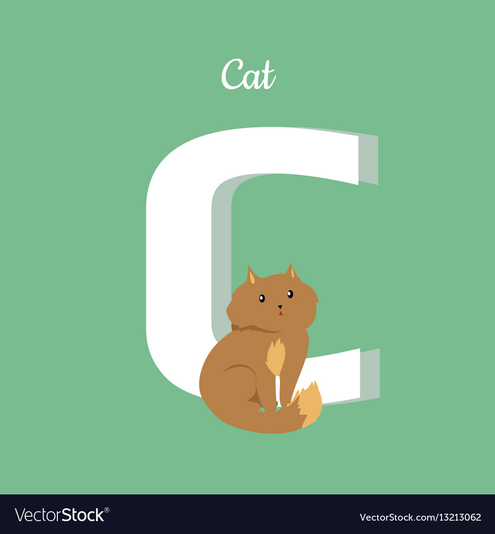 Cat with letter c isolated domestic kitten abc vector image