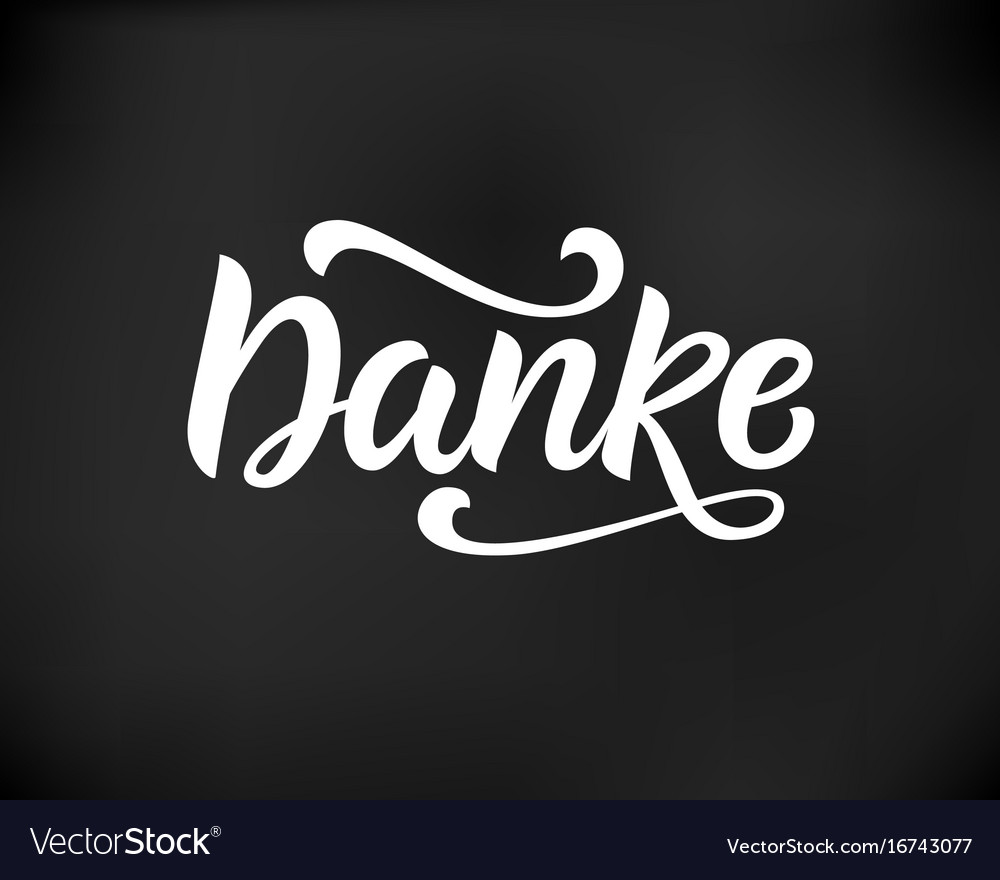 Thank you in german hand written lettering vector image