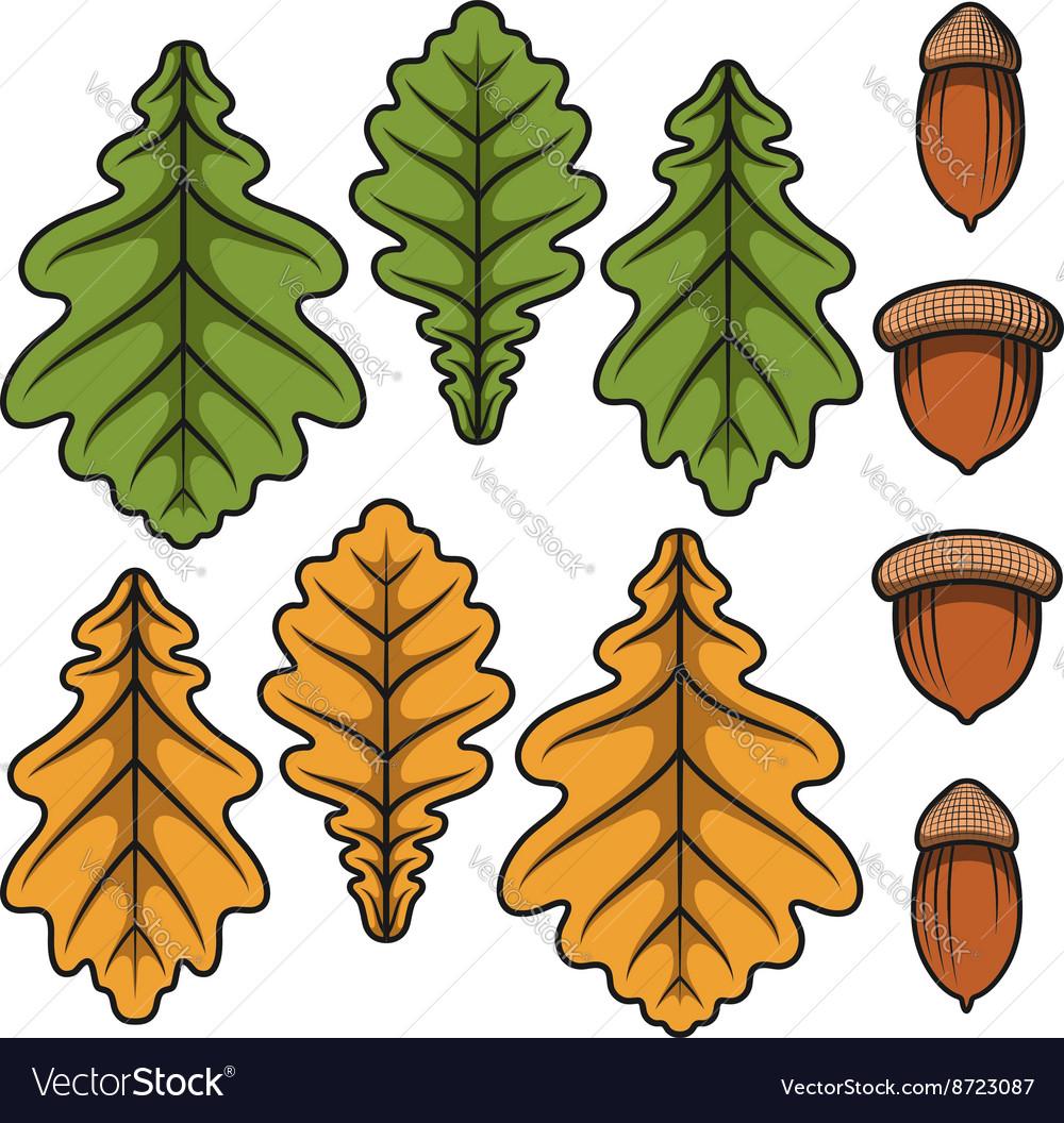 Acorn Autumn leaf color, Acorn, watercolor Painting, food, leaf png |  Klipartz