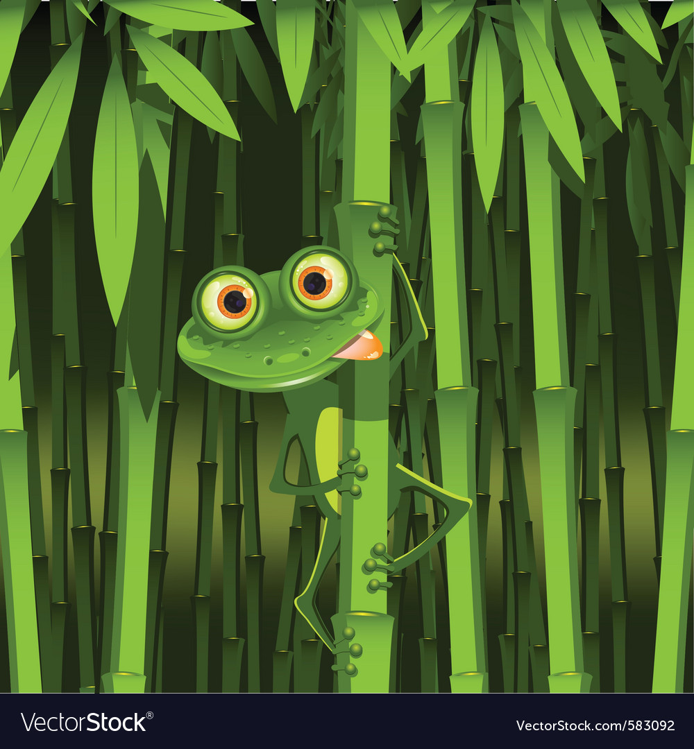 Curious frog vector image