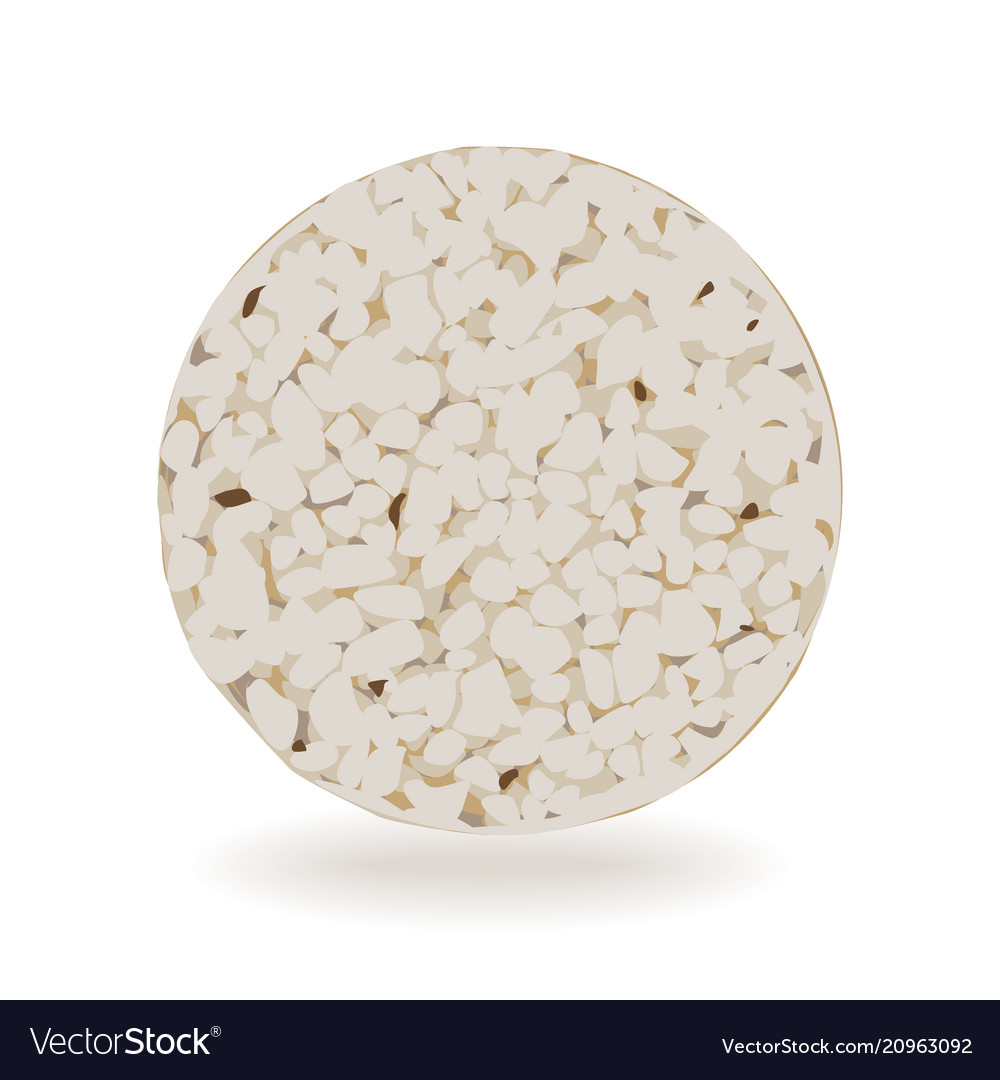 Wholegrain crispbreads isolated on white vector image