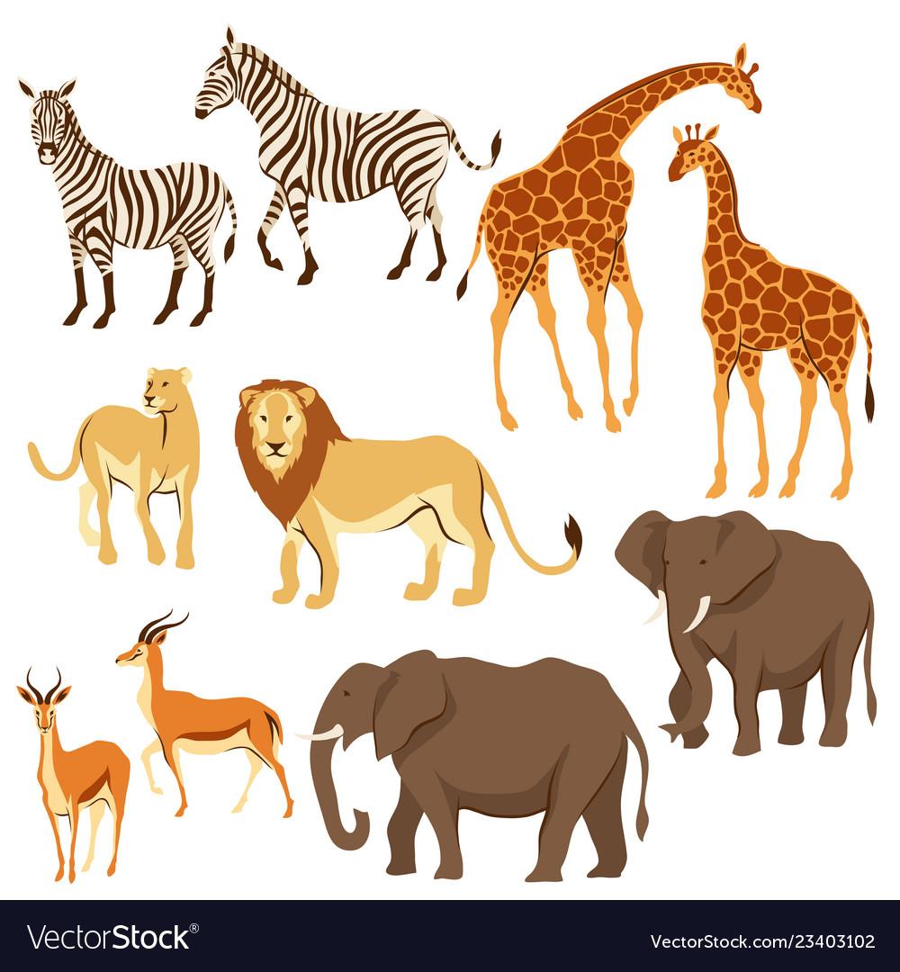 Set of african savanna animals