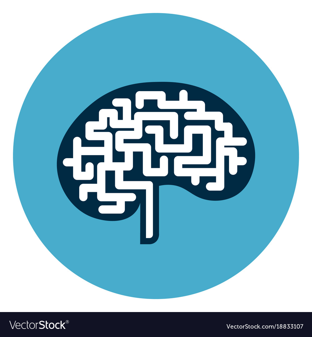 Brain icon web button isolated on blue round vector image