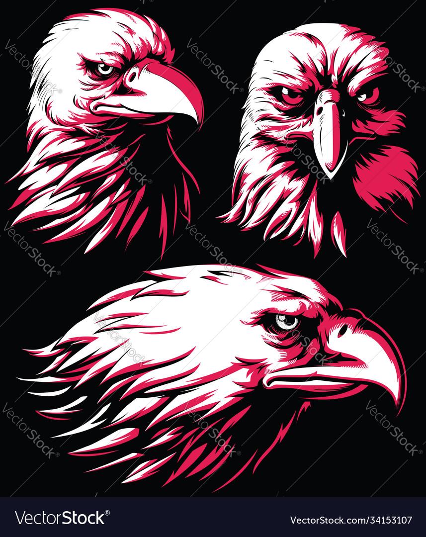 Silhouette eagle falcon head logo isolated