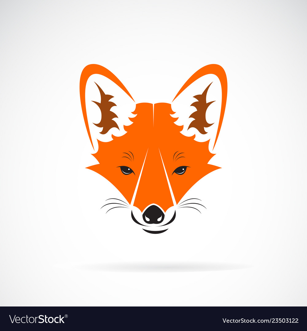 A fox face design on a white background wild